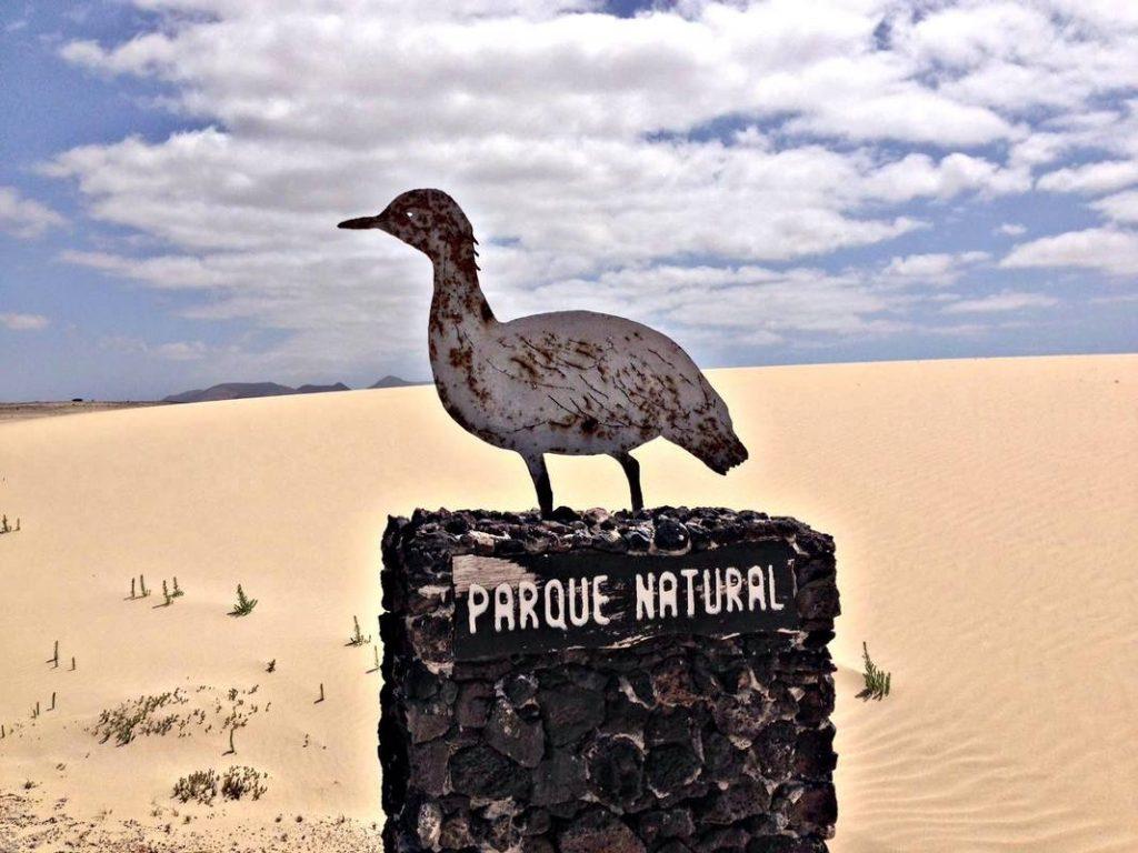 Cosa vedere a Corralejo Fuerteventura