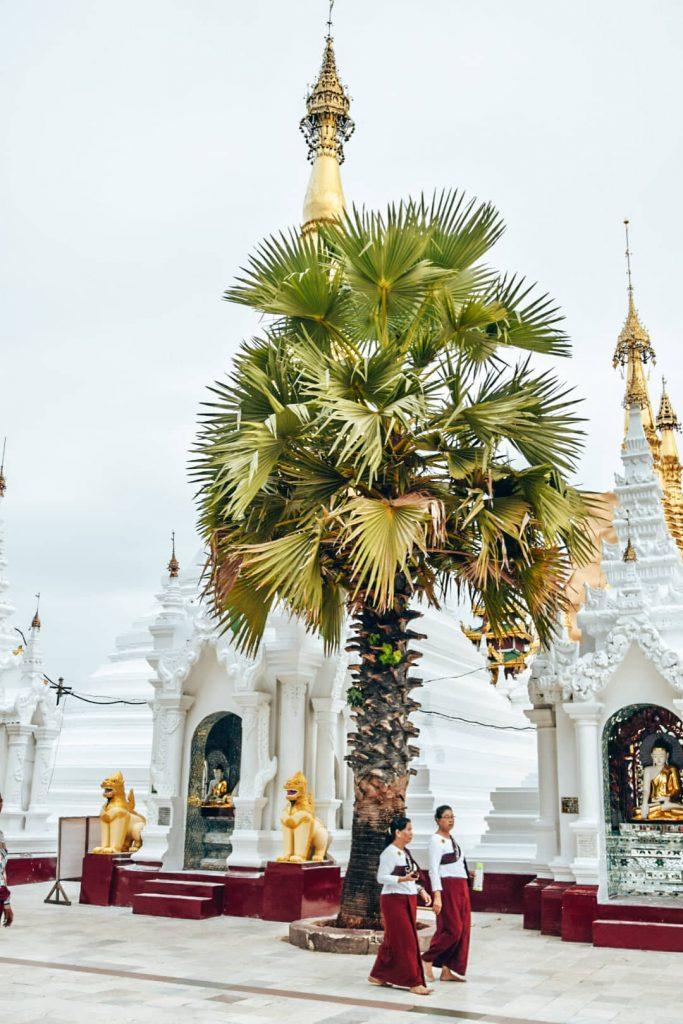 Cosa vedere a Yangon