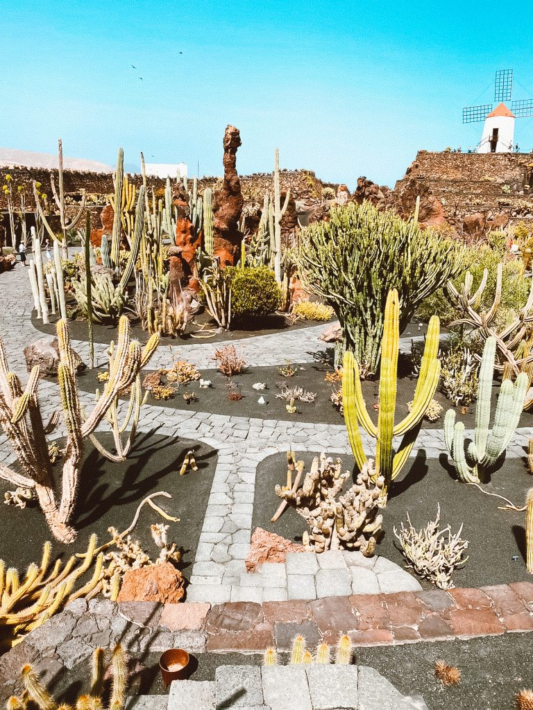 10 cose da fare e vedere a Lanzarote